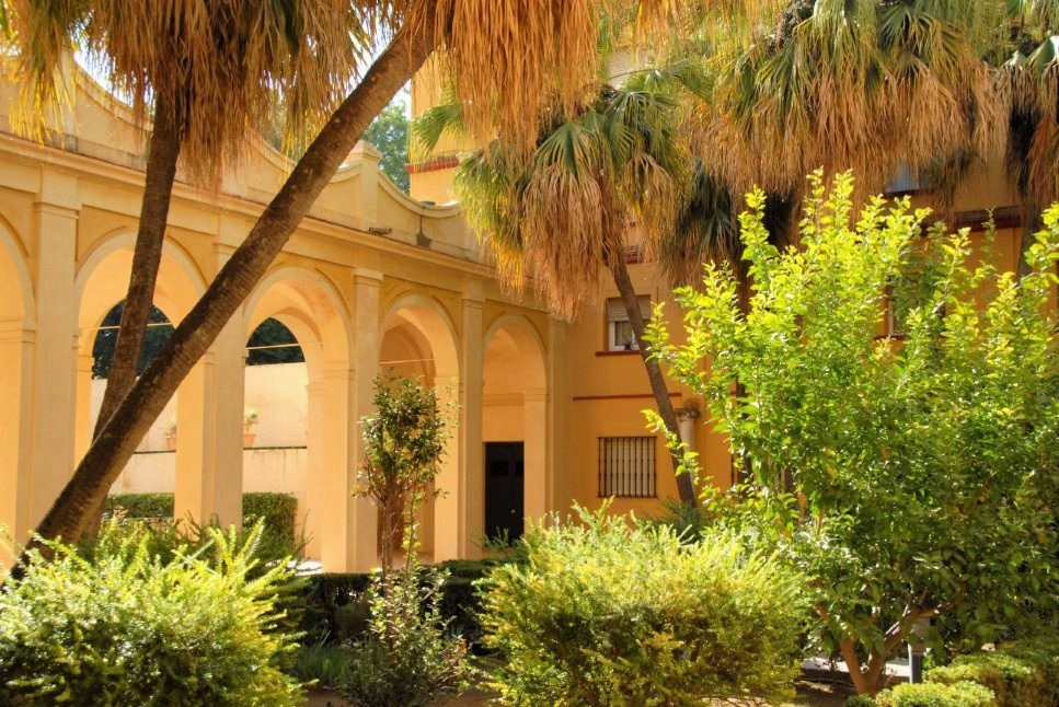 a bright courtyard with vibrant green palm trees and other tropical plants