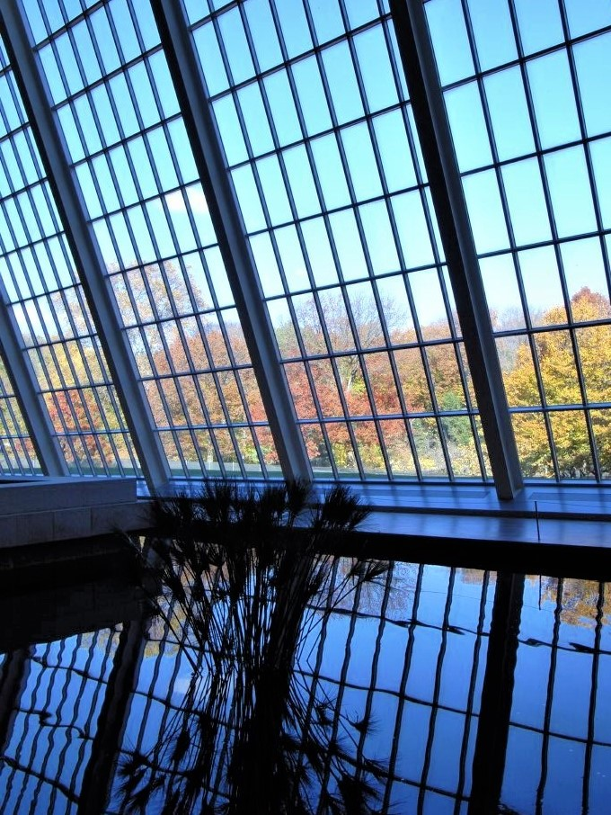 a wall of rectangular glass windows against a blue sky. In the foreground, an arrangement of reeds sits in the centre of a reflecting pool