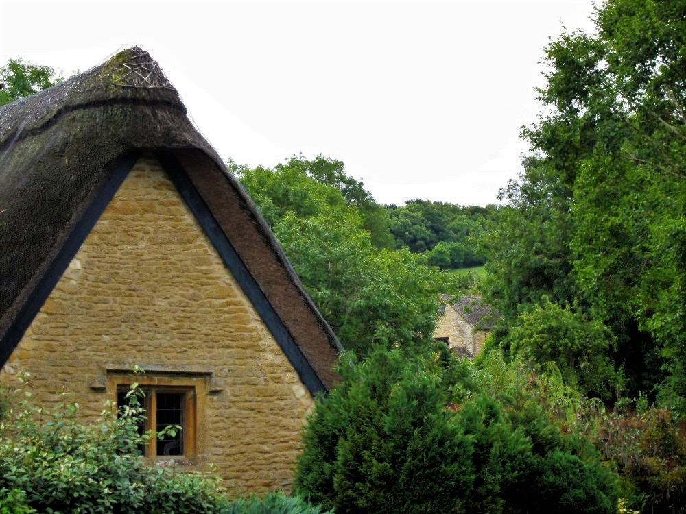 The peak of a thatched roof among treetops