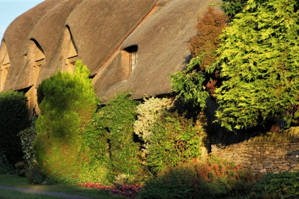 a thatched cottage with a low, sloping roof