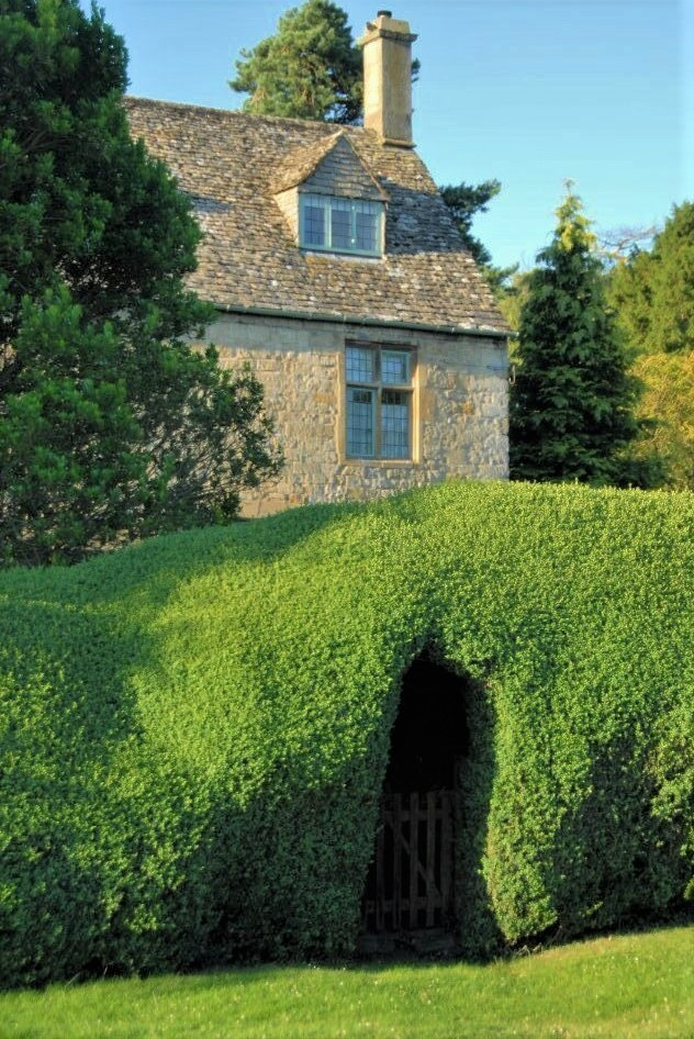 A sandstone cottage behind a tall green hedge