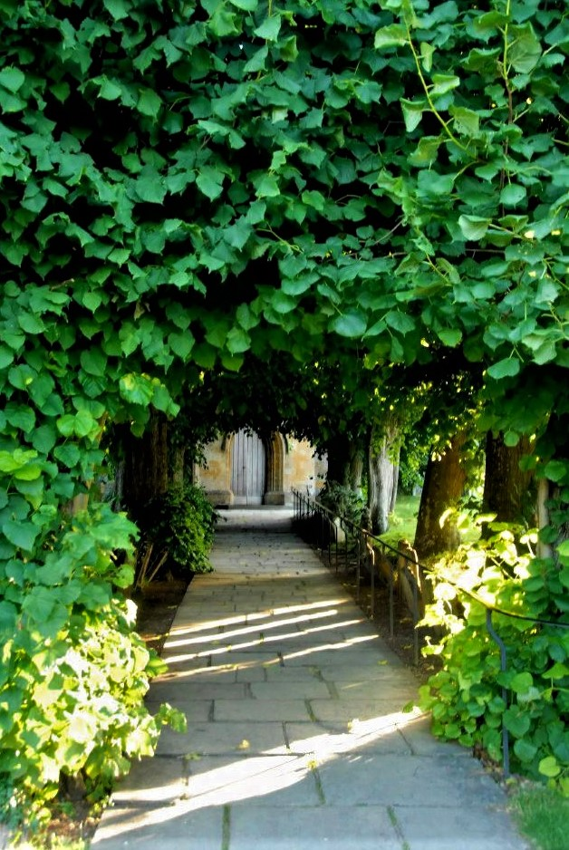 a narrow pathway through a tunnel with bright green ivy growing on either side and above, leading to a Medieval door