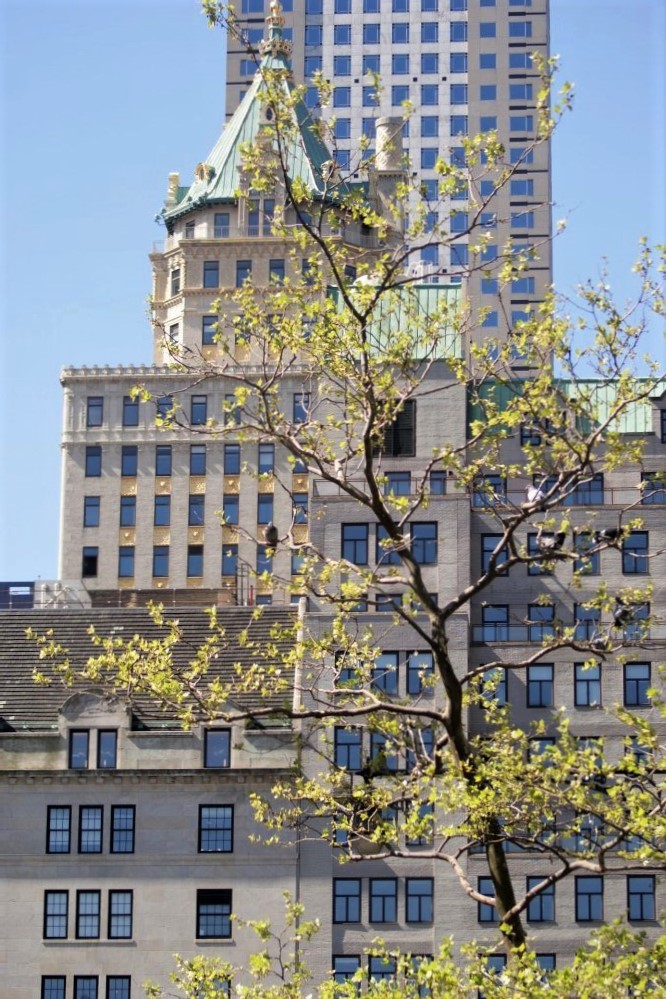A distant skyscraper visible through boughs of bright green trees