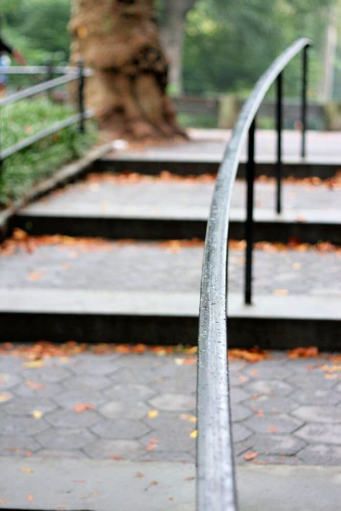 An iron railing leading up curving concrete steps surrounded by greenery