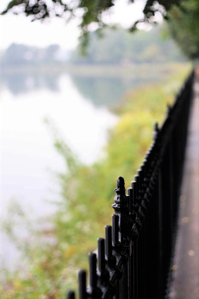 An old iron fence running alongside a misty pond